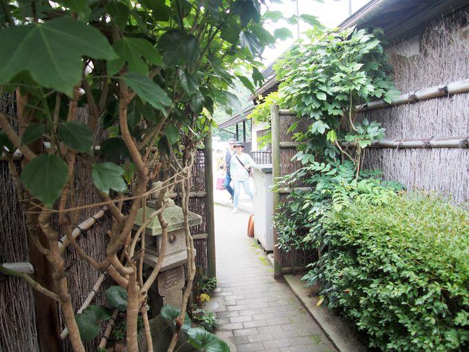 脇道を抜けた広い庭で販売&イートイン