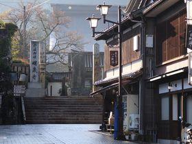 300人の彫刻師が集まる井波彫刻の町・富山県南砺市井波を散策|富山県|トラベルjp<たびねす>