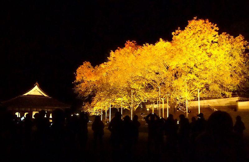星空と紅葉のコラボレーション!日本最古の庶民学校「閑谷学校」(岡山県備前市)