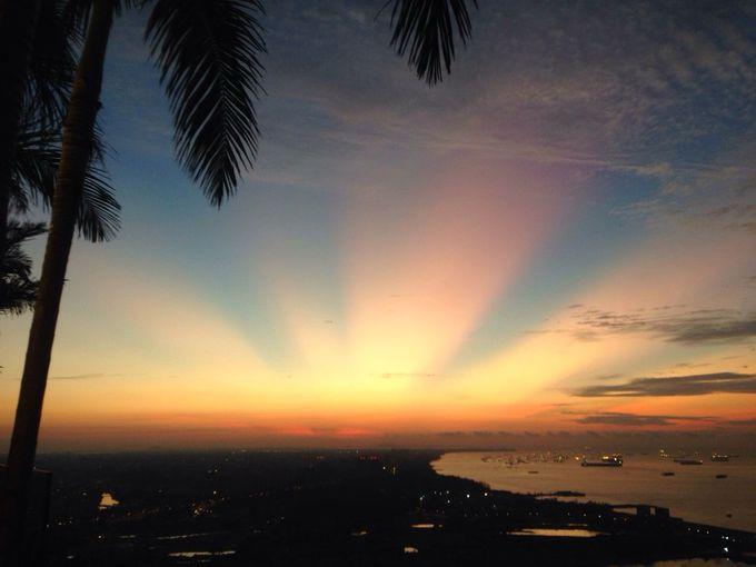 地平線から昇る太陽が美しい!インフィニティプールで迎える最高の朝