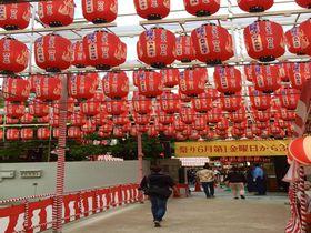 広島最大級の夜店も!広島三大祭「とうさかん」の楽しみ方