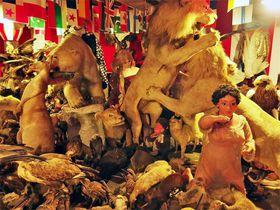 伊豆のトンデモ・パラダイス!「まぼろし博覧会」で昭和B級カルチャーの懐かしさと狂気を体験する
