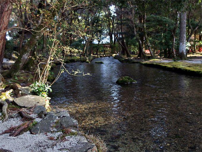 上賀茂神社を満たす神聖な「水」で、身も心も浄められたい!
