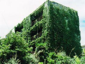 寂しくも幻想的な廃墟にあふれた島、長崎「池島」を撮り歩く!