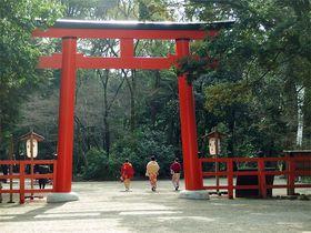 結局どこがどう凄い?京都・下鴨神社の本当の見所&パワ—スポットとは