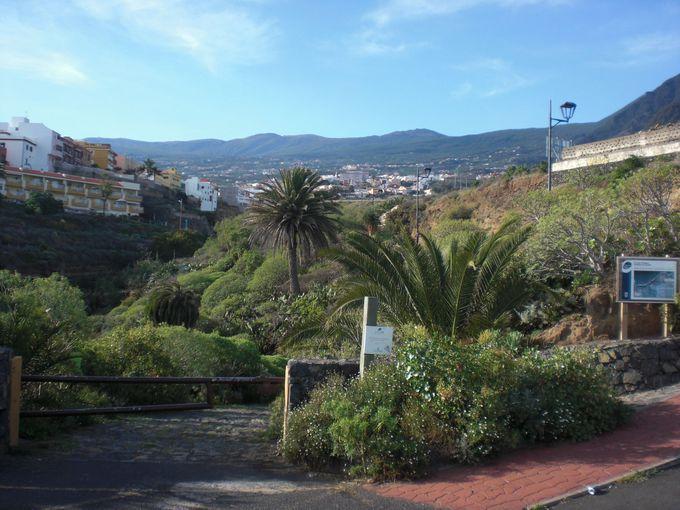 ランブラ・デ・カストロ(Rambla de Castro)で自然を満喫