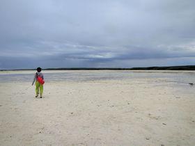 フィリピン セブからたったの15分!秘境オランゴ島の楽しみ方