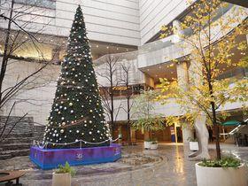 ミシュランガイドも認めた大人のスポット、東京オペラシティには無料で楽しめるところが一杯!|東京都|トラベルjp<たびねす>