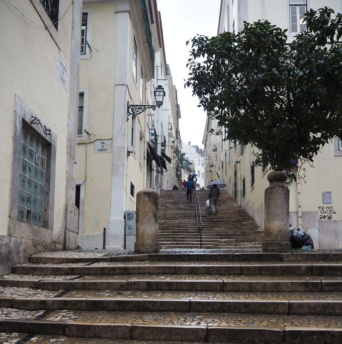 歴史の勉強の合間に「坂道散歩」を楽しむ!