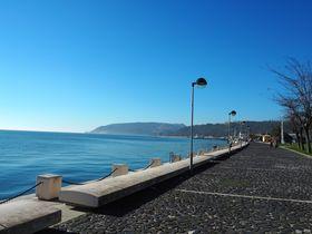 リスボンから日帰り旅行!港町セトゥーバルの楽しみ方