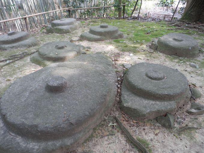 創建当時の礎石が並ぶ東塔跡