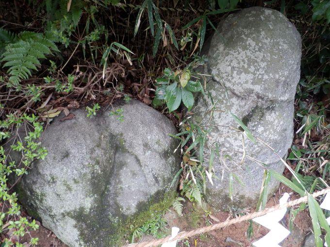 注連縄ではりめぐらされた陰陽石