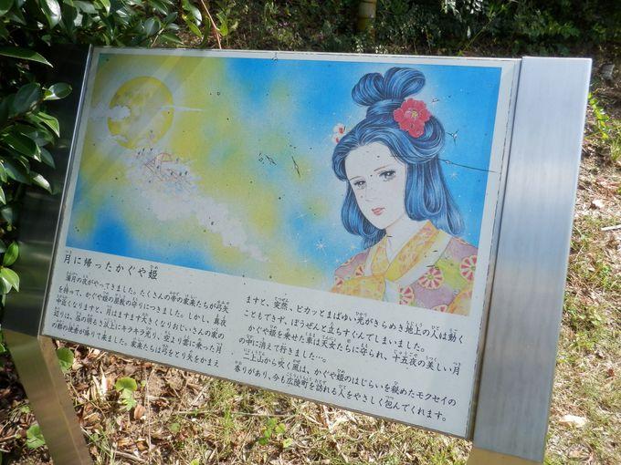 あの大物漫画家までが協賛!『竹取物語』のストーリーを紹介した竹取公園・竹林コーナー