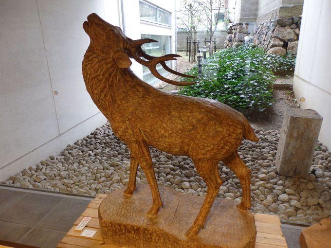 等身大の迫力!奈良の伝統彫刻・一刀彫の大鹿