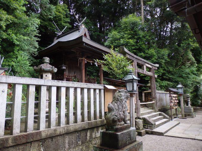 境内に神社!?長弓寺の鎮守・伊弉諾神社