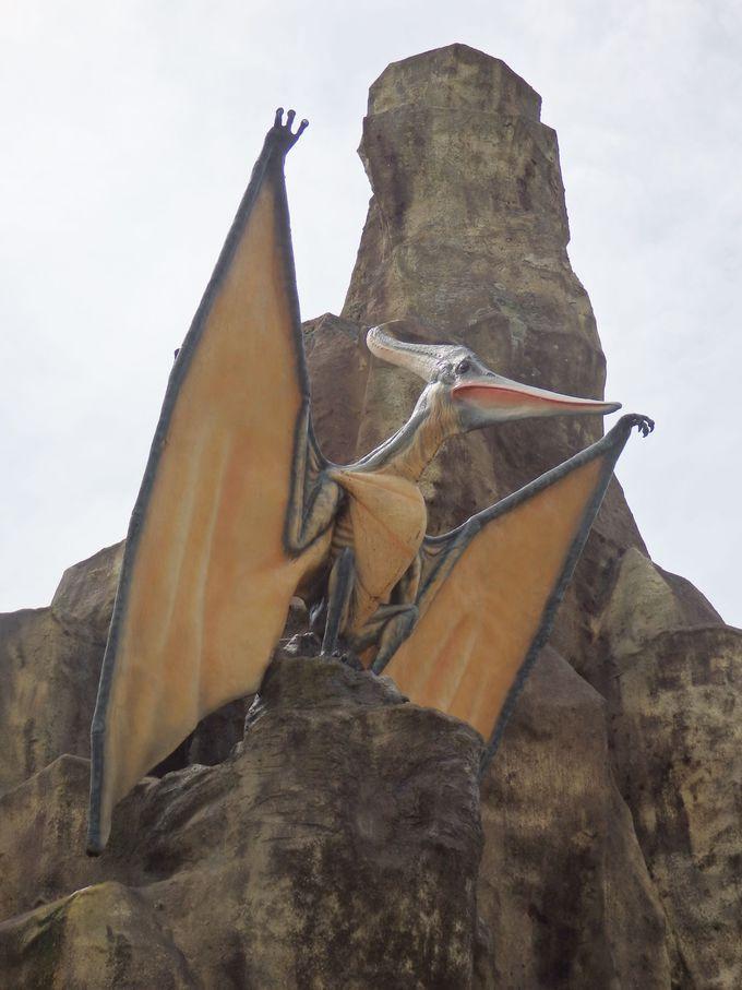 翼竜類の代表といえば、やはりこれ!プテラノドン