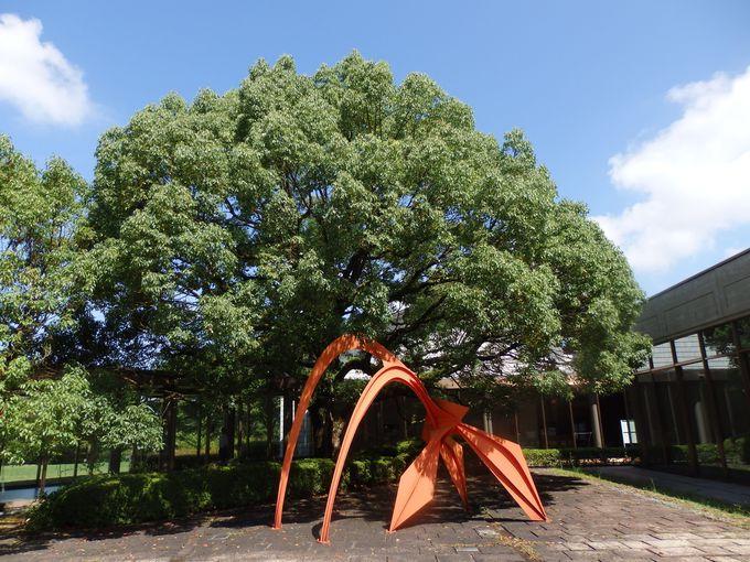 現代アートも所蔵!中庭に展示されているアレクサンダー・カルダーの『フラミンゴ』