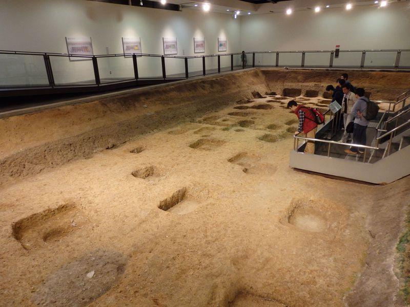 世界遺産・平城宮跡の地下世界!謎の塼積官衙が眠る遺構展示館