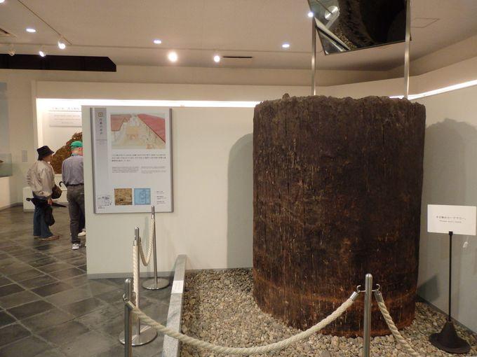平城宮での暮らしを支えた巨大な井戸枠