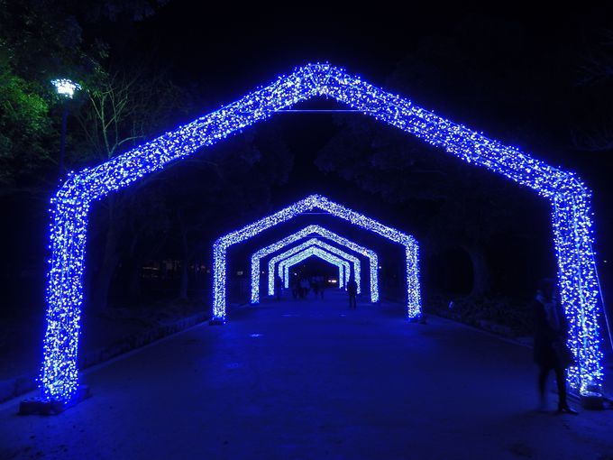幻想的な灯りに魅せられて!奈良「しあわせ回廊なら瑠璃絵」