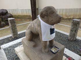 達磨と聖徳太子!?意外な歴史が伝わる奈良県王寺町の達磨寺