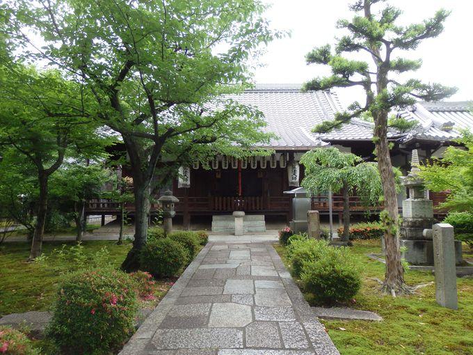 ここで院政がおこなわれた!鳥羽離宮の名残りをいまに伝える安楽寿院