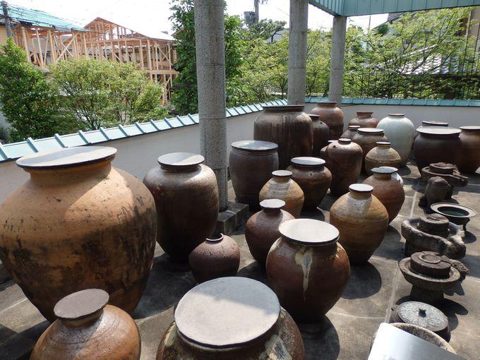 日本や韓国の大型陶磁器群