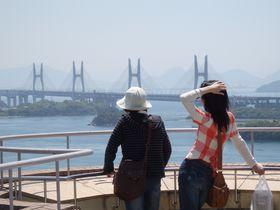 絶景を独り占め!瀬戸内海を一望出来る岡山の景勝地・鷲羽山|岡山県|トラベルjp<たびねす>
