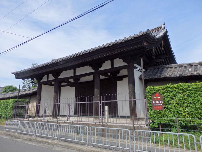 東寺では唯一の国宝の門!鎌倉時代に建てられた蓮華門