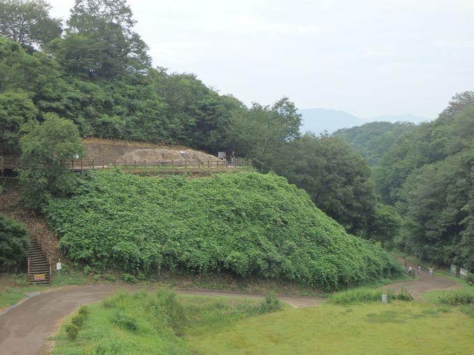 ここから大量の銅鐸が!?加茂岩倉遺跡の全体像