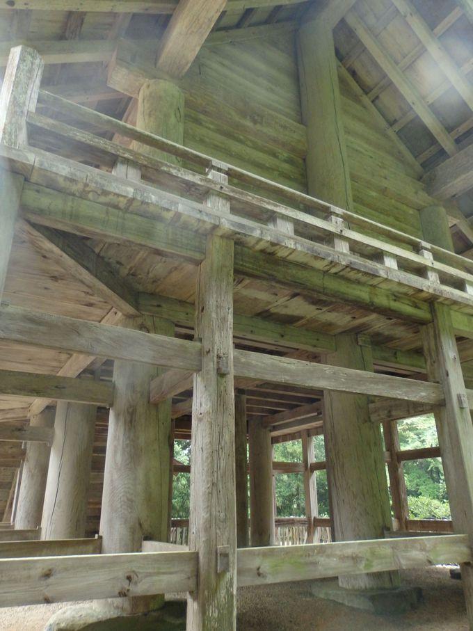 大社造りの古式を伝える本殿背面