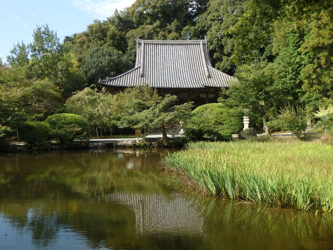 日本最古の玉眼仏!浄土式庭園を持つ本堂