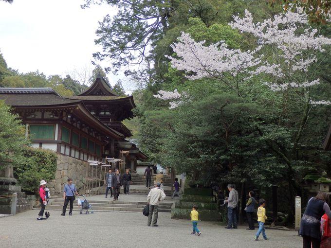 文化財の宝庫!日本最古の社の一つ・石上神宮