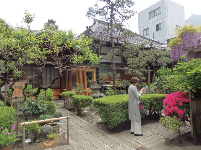京都随一の繁華街にひっそりたたずむ瑞泉寺