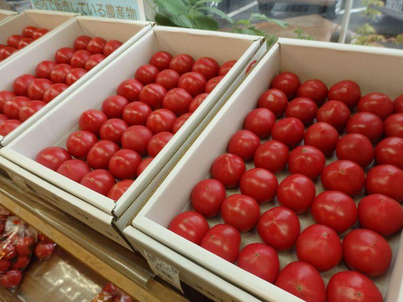新鮮な農産物や特産品が満載!高知県・道の駅南国「風良里」