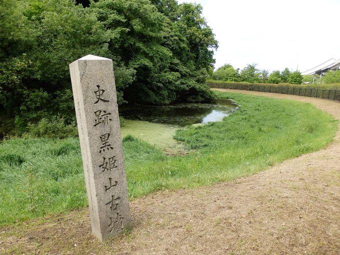 阪和自動車道の脇に位置する黒姫山古墳