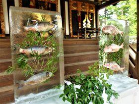 氷柱のなかを泳ぐお魚!?奈良市・氷室神社の「献氷祭」|奈良県|トラベルjp<たびねす>