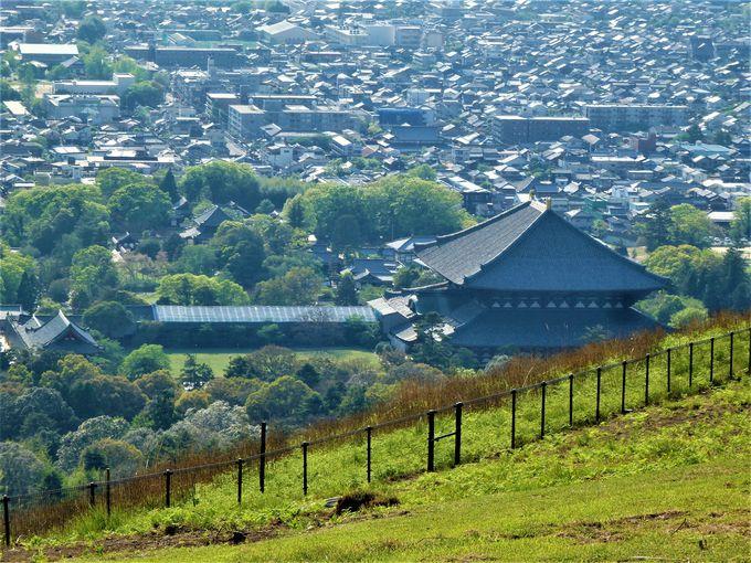 奈良を代表する観光スポットを見下ろそう!下界では決して見ることの出来ない眺めの数々