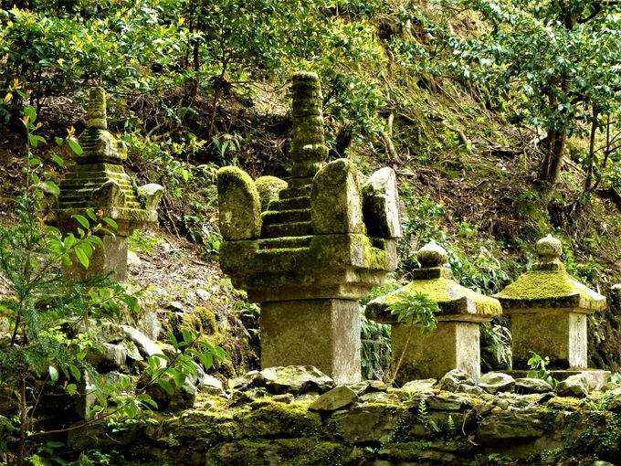 明恵上人の御廟とその前に並ぶ石塔の数々