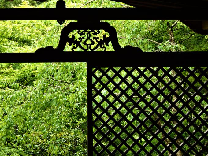 新緑を堪能しよう!明恵上人ゆかりの国宝・石水院