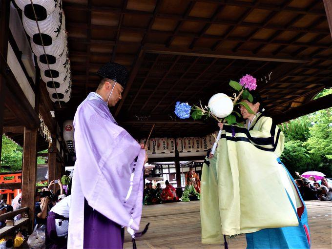 紫陽花にちなんださまざまな芸能も!拝殿でとりおこなわれる蹴鞠奉納