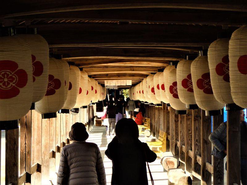 まとめてお参り!岡山・総社宮の特徴は回廊と庭園にあり