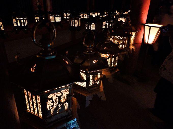世界遺産の杜にともる無数の明かり!奈良・春日大社「万燈籠」