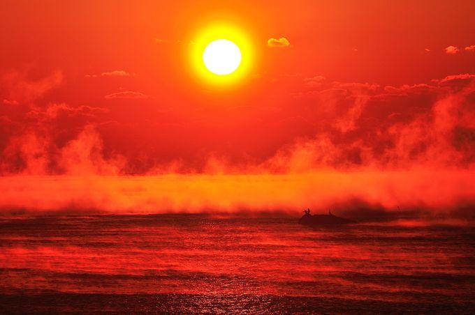 カメラに収めたい絶景~高知・中土佐町と双名島の海霧