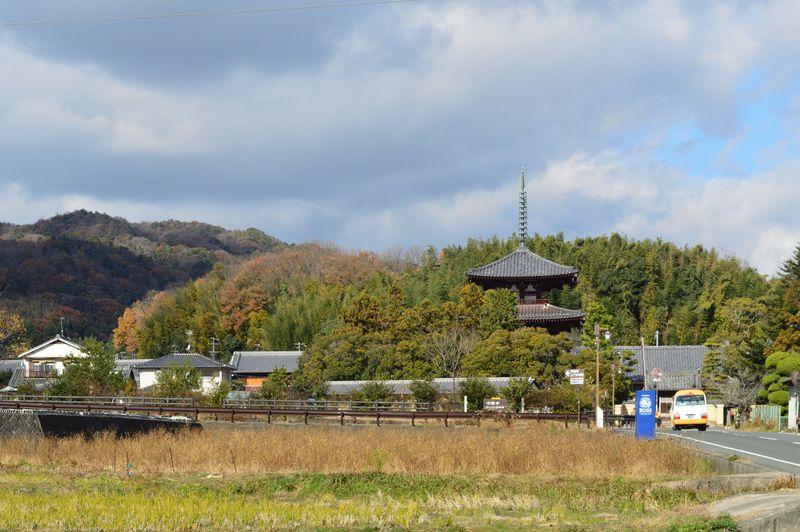 冬の奈良「いかるがの里」で飛鳥ロマンの中心地をウォーキング