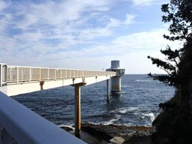 子どもも大人も夢中!千葉県勝浦「海中展望塔」と「海の博物館」は房総の海を一年中楽しめる|千葉県|トラベルjp<たびねす>