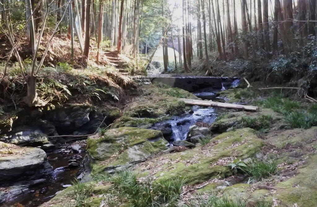 眼鏡橋周辺は苔の緑と透き通る水の別世界