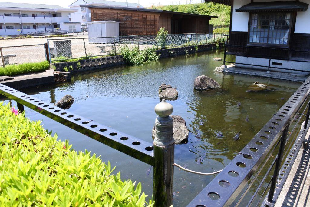 住宅街に建つ、水に囲まれた清々しい神社