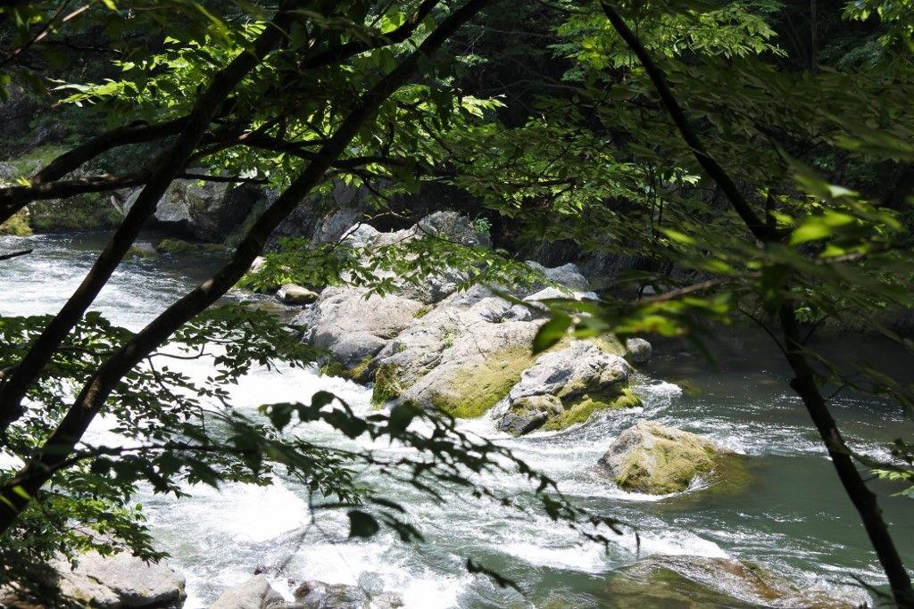 川の流れや岩壁を楽しみながら散策を