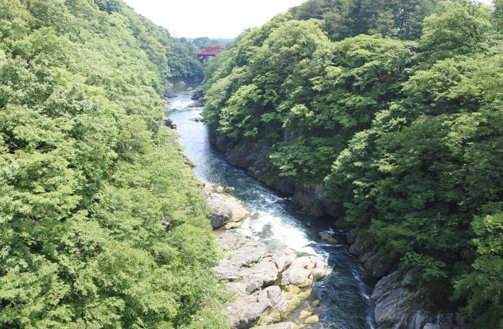 高津戸峡からはねたき橋まで、約30分の渓谷散歩